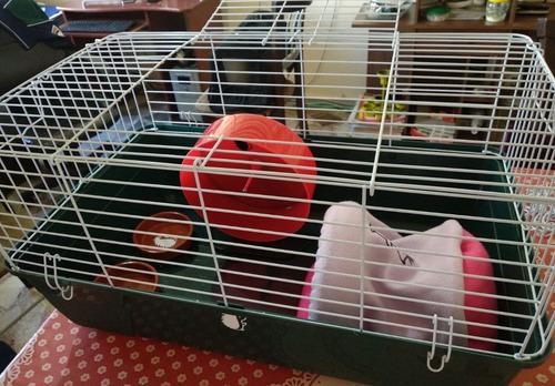 jaulas para erizos varios tamaños