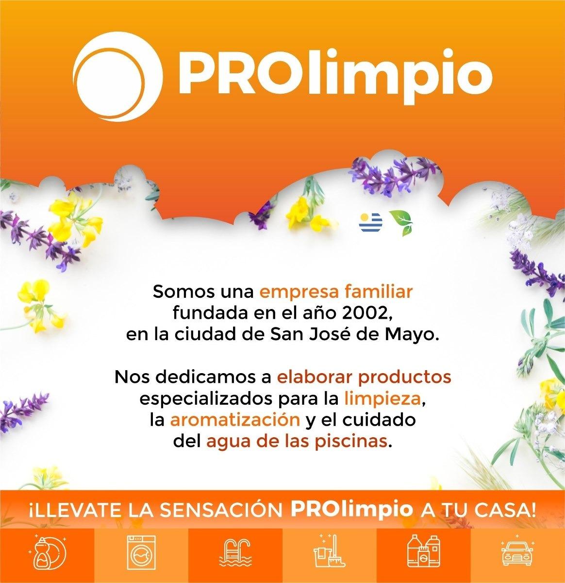 a788b5d23d8a Kit De Limpieza Para Lavar Y Perfumar Ropa - Prolimpio