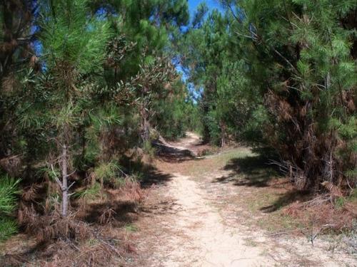la florida rocha-dos padrones-km 253 ruta 10-al sur