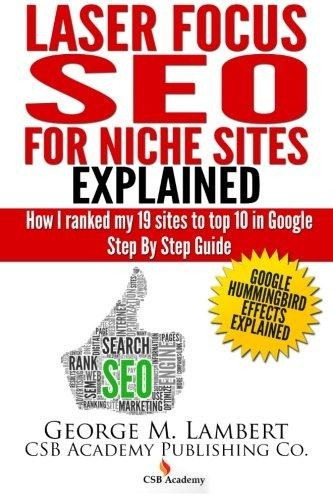 laser focus seo for niche sites explained : how i ranked my