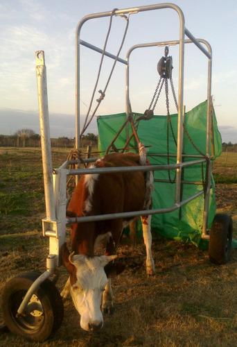 levanta vacas o caminador