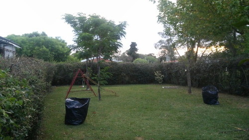 limpieza de terrenos, poda y tala de arboles, mantenimiento