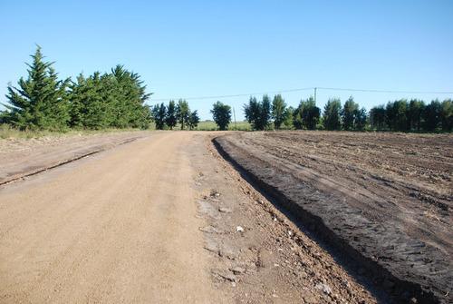 limpieza terreno, relleno, balasto, tosca, pedregullo arena.