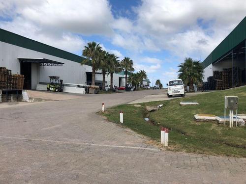 local venta deposito fiscal de 1120m dentro zona franca libertad
