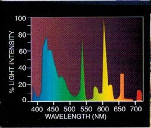 luz para acuario (peces plantas corales) 8w 28,8cm t5 15mm