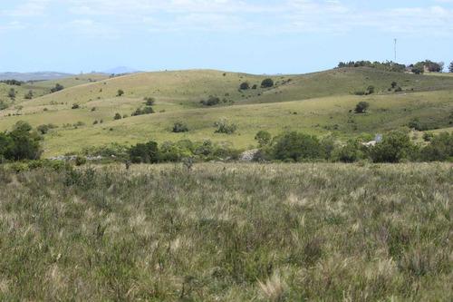 maldonado campo varios fines, hermosa vista