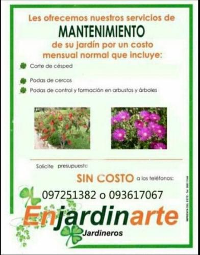 mantenimiento jardines para complejos, empres y particulares