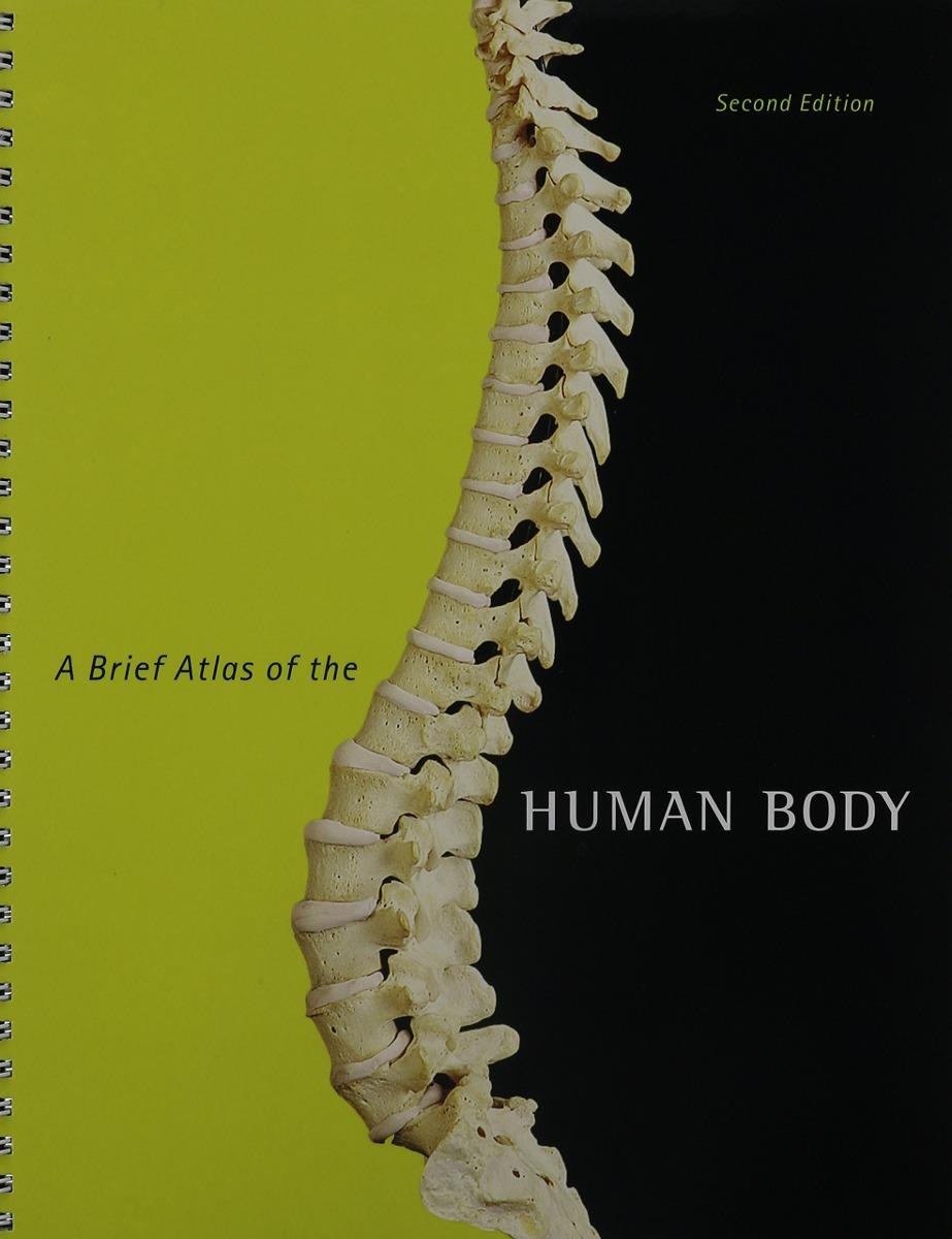 Hermosa Anatomía Pearson Y Manual De Laboratorio Fisiología Modelo ...