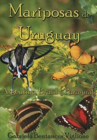 mariposas de uruguay. argentina y brasil - g. b. viglione
