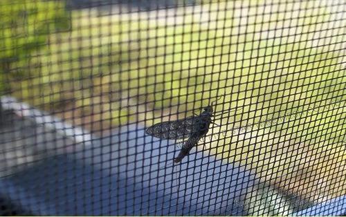 maya mosquitero para ventanas - puertas