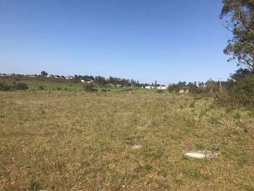 minas- 2.4 has 2 terrenos bien ubicados, 350 mts frente