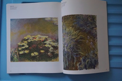 monet in the 20th century, an introduction