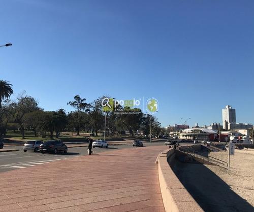 monoambiente en venta en parque rodó -  riva marina 2