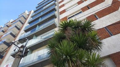 monoambiente pb  amplio patio c/parrillero