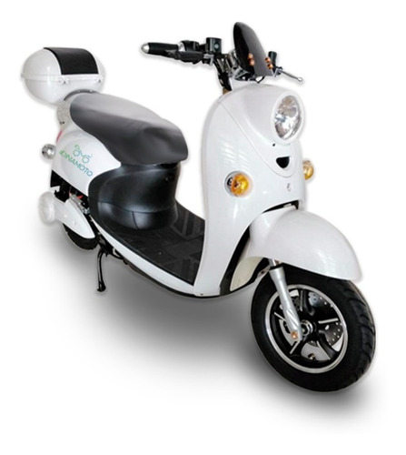 moto eléctrica diseño clásico - dinamoto ñandú