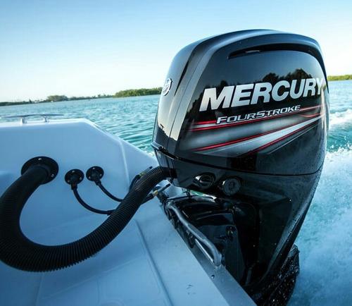 motores fuera de borda mercury,  ecopesca