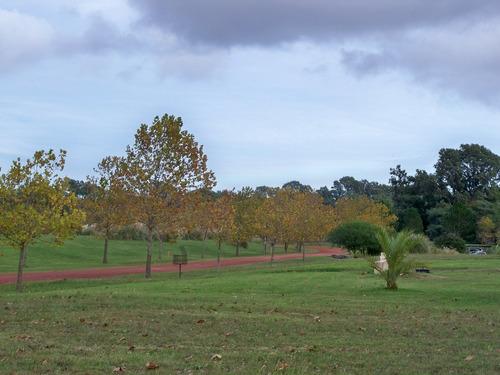 muy buen terreno de 3.598 m2 en carmelo golf