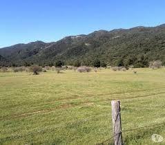 necesitamos campos para arrendar. pedidos concretos. reserva