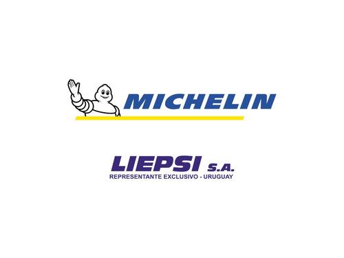 neumático camioneta michelin r17