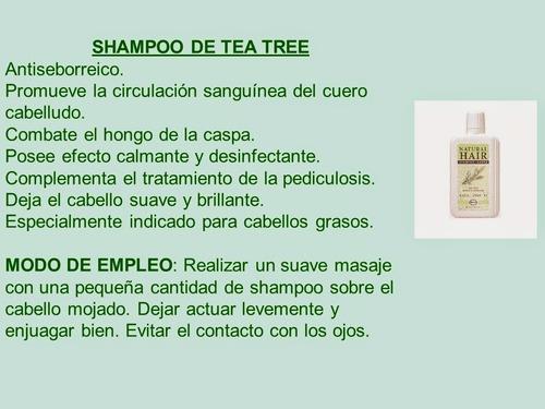 no caspa! shampoo herbal de tea tree manuca y rosalina just