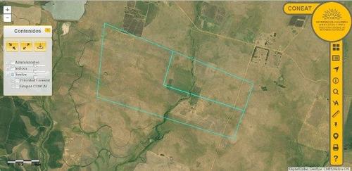 oferta venta campo salto 221 hectáreas