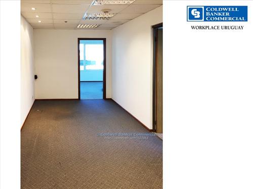 oficina alquiler world trade center -wtc- pocitos nuevo