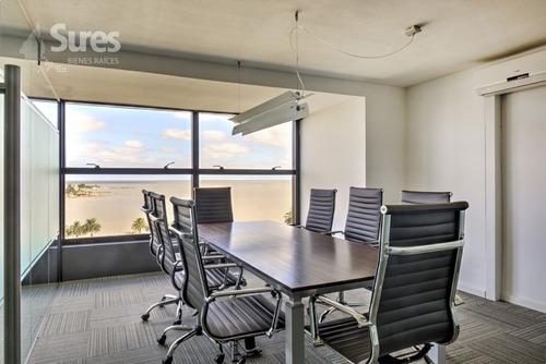 oficinas alquiler palermo montevideo oficina en edificio corporativo - marigot office