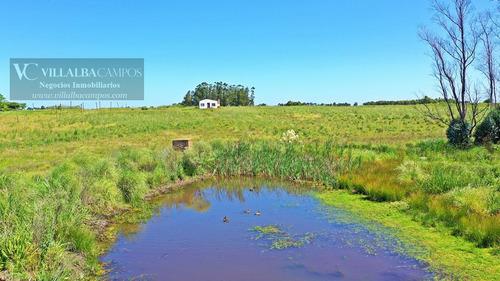 oportunidad chacra, ruta 6 campo de 4 hectareàs