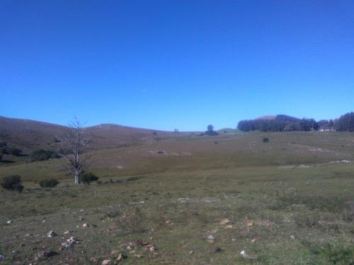 oportunidad!!  dueño vende  36,5 hectáreas excelente campo!!