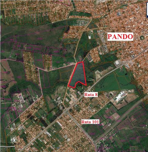 pando, ideal viviendas o logistica