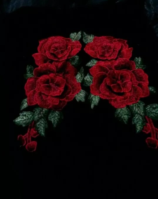 parches grandes rosas rojas bordadas vestido camperas - Fotos De Rosas Rojas Grandes