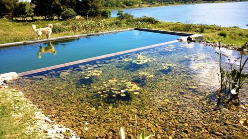 piscinas naturales, biopiscinas, estanques, humedales, decks