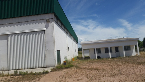 planta industrial de prensado de soja