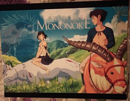 poster o lámina anime y manga