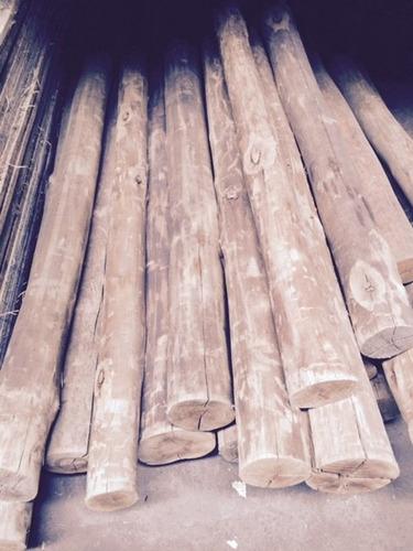 postes eucaliptus tratados