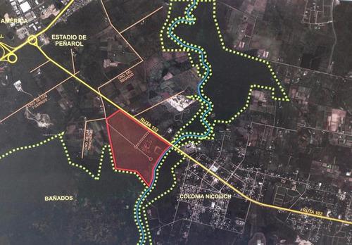 predio de 32,5 hectáreas sobre ruta 102