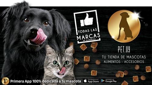 promo comida perro pro plan cachorro complete 15 +  bolso