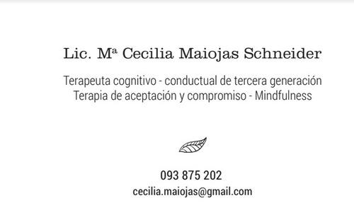 psicologa. atencion psicologica, evaluacion porte y tenencia