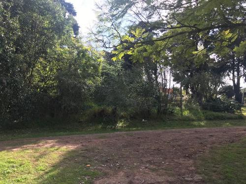 punta gorda- atractivo terreno a metros laguna solis