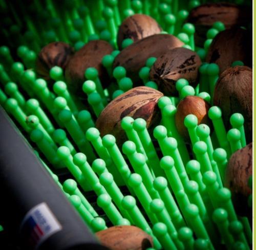 recolector cosechador de nueces,pecan,almendras, olivas