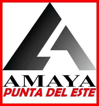 renault kwid entrega inmediata en todas sus versiones amaya