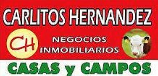 Logo de  Escritorio Carlitoshernandez