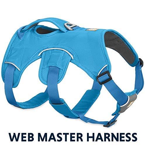 408fe1aee Ropa Para Mujer Arnés Para Perro Web Master Con Asa De Me - U S 115 ...