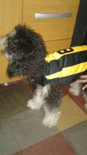 ropa para perro camiseta de peñarol talle l