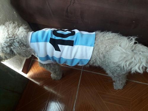 ropa para perros camiseta de cerro talle m