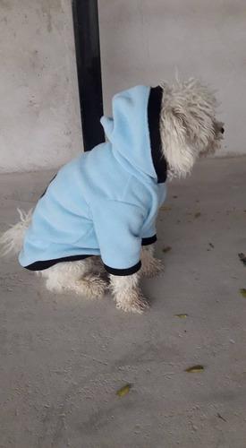 ropa para perros canguro celeste buzo uruguay polar talle m