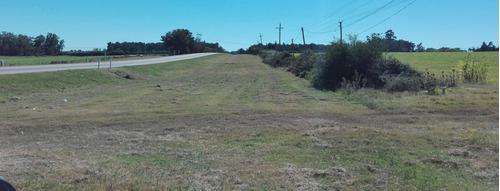 ruta 5 fracciones de 3 hectareas