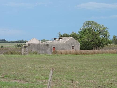 san ramón muy buen campo en 62 hectareas