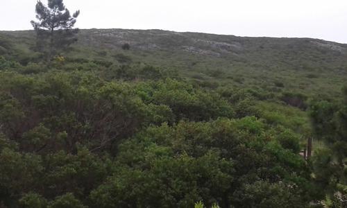 se vende terreno cerro los burros inmejorable vista cerros