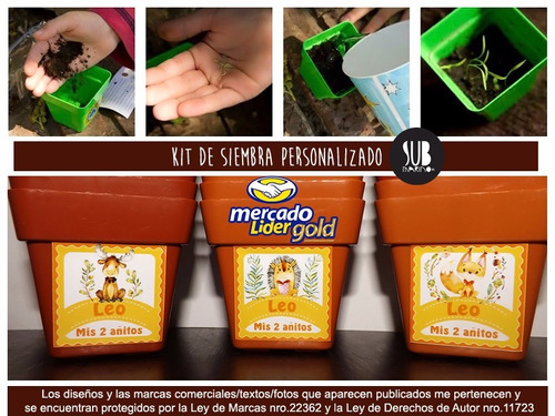 souvenir cumple infantil kit siembra maceta numero 10